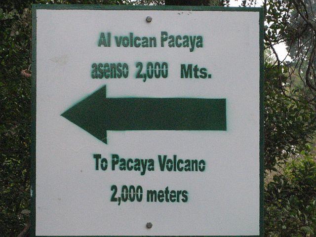 pacaya-canopy-el-salvador-001.jpg